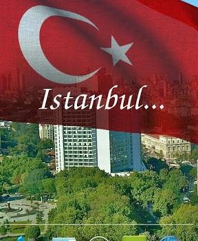 3D Turkey Flag LWP Ekran Görüntüleri - 2