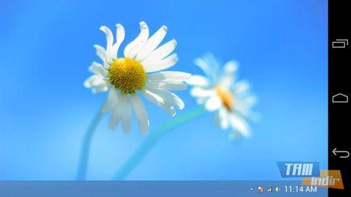 Fake Windows 8 Ekran Görüntüleri - 2