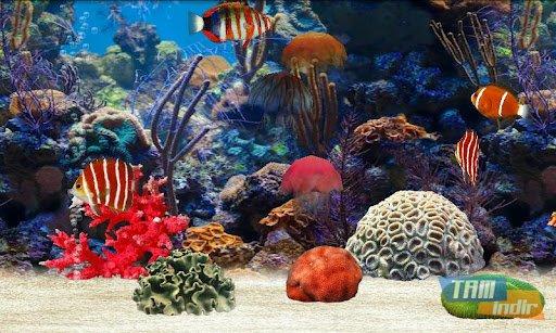 Fish Farm Ekran Görüntüleri - 5