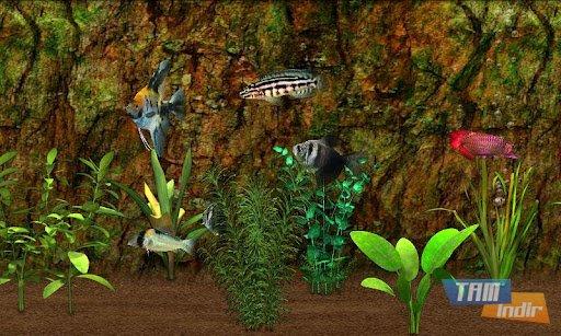 Fish Farm Ekran Görüntüleri - 4