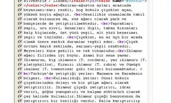 Epiri Editör Ekran Görüntüleri - 3