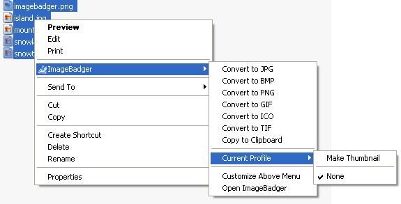Image Badger 4.1 Ekran Görüntüleri - 2