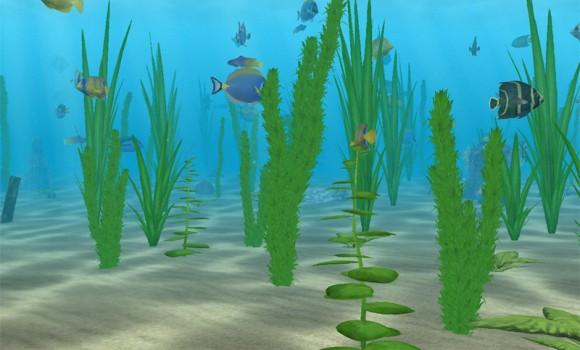 Denizde Yaşam Ekran Koruyucusu Ekran Görüntüleri - 1