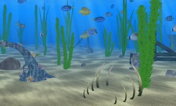 Denizde Yaşam Ekran Koruyucusu Ekran Görüntüleri - 3