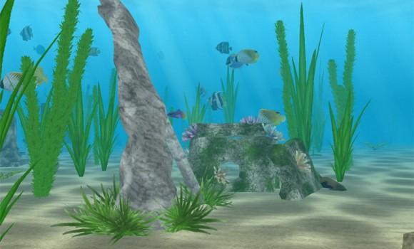 Denizde Yaşam Ekran Koruyucusu Ekran Görüntüleri - 2