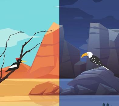 Birdstopia Ekran Görüntüleri - 1