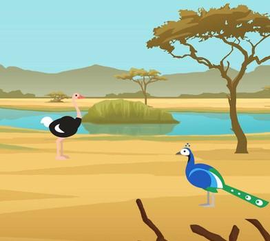 Birdstopia Ekran Görüntüleri - 2