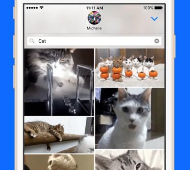 Gfycat Loops Ekran Görüntüleri - 4