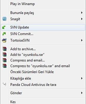 TortoiseSVN Ekran Görüntüleri - 2