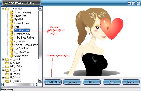 MSN Winks Installer 1.2.2 Göz Kırpmaları Ekran Görüntüleri - 1
