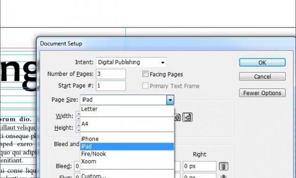 Adobe InDesign Ekran Görüntüleri - 1