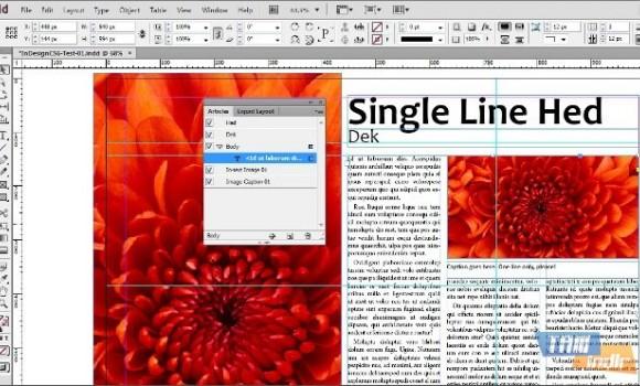 Adobe InDesign Ekran Görüntüleri - 3
