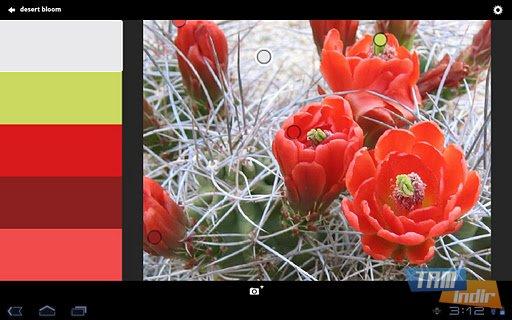 Adobe Kuler Ekran Görüntüleri - 2