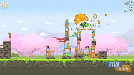 Angry Birds Seasons Ekran Görüntüleri - 2