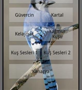Kuş Sesi Ekran Görüntüleri - 1