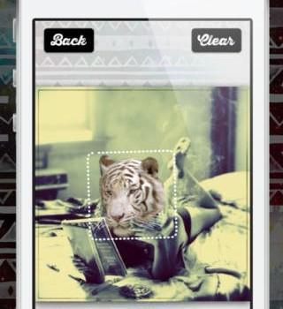 Animal Face Ekran Görüntüleri - 2