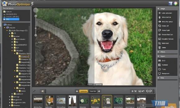 Ashampoo Photo Optimizer Ekran Görüntüleri - 1