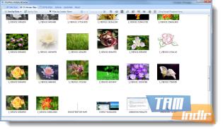 ClipMon Ekran Görüntüleri - 3