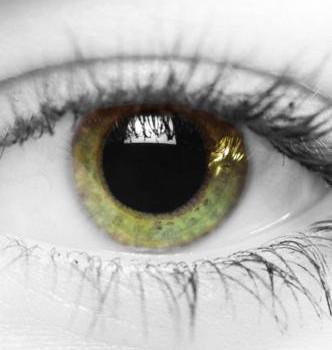 Color Shine Ekran Görüntüleri - 3