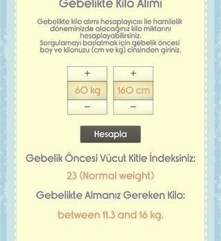 Hamilelik Ekran Görüntüleri - 4