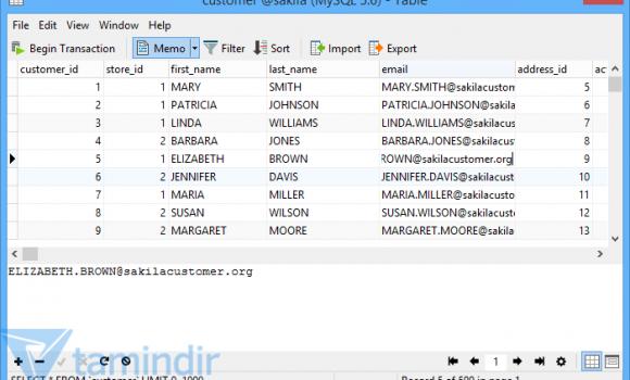 Navicat MySQL Windows Ekran Görüntüleri - 2