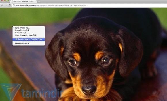 Save to Google Drive Ekran Görüntüleri - 4