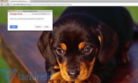 Save to Google Drive Ekran Görüntüleri - 3