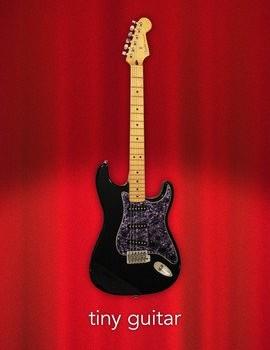 Tiny Guitar Ekran Görüntüleri - 4