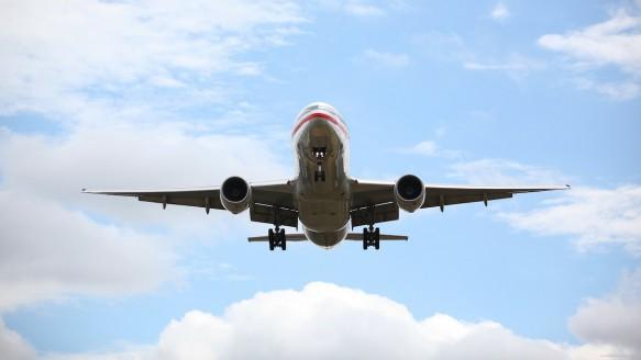 Uçağa Binen Kedi Pilota Saldırdı