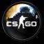 Counter-Strike: Global Offensive (CS:GO)