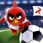 Angry Birds Goal!