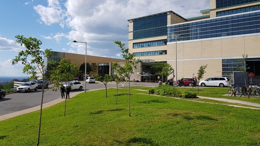 Samsung, Kanada'da Yapay Zeka Laboratuarı Açtı