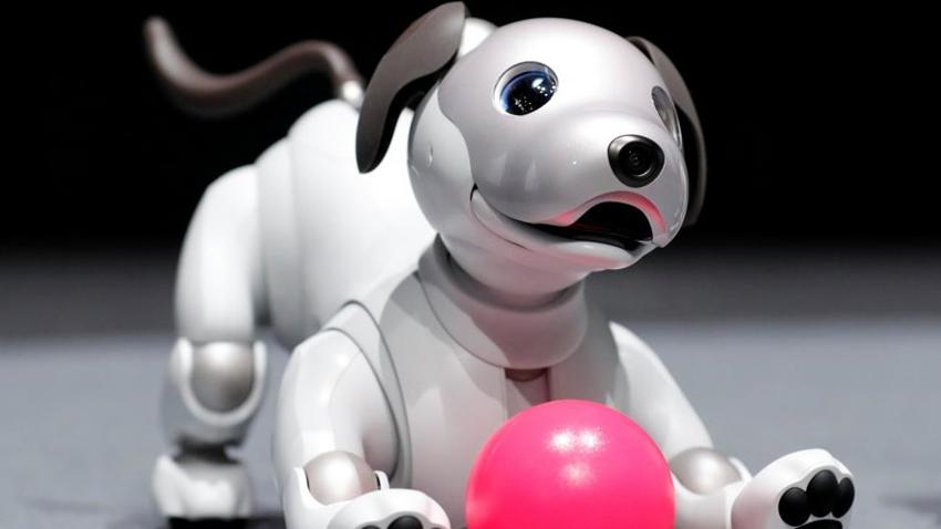 Süper Akıllı Köpek Sony Aibo'ya Merhaba Deyin!