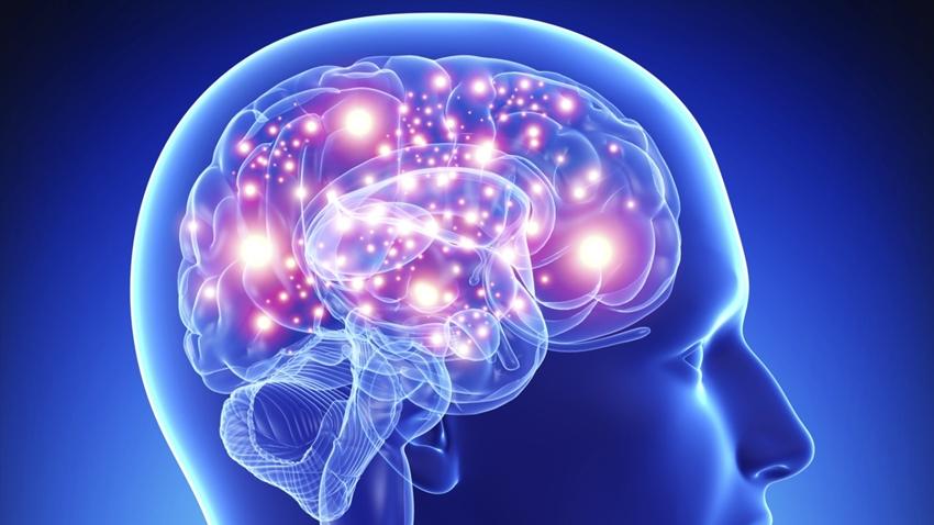 Güçlü Bir Beyin İçin Neler Yapmalıyız