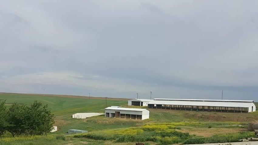 FONS Çiftlik Bank