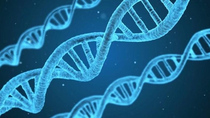 DNA Kaydetme