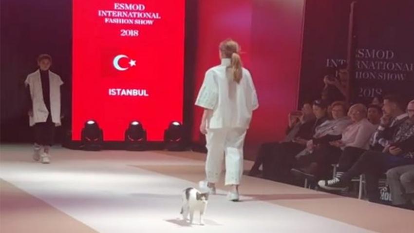 gerçek catwalk