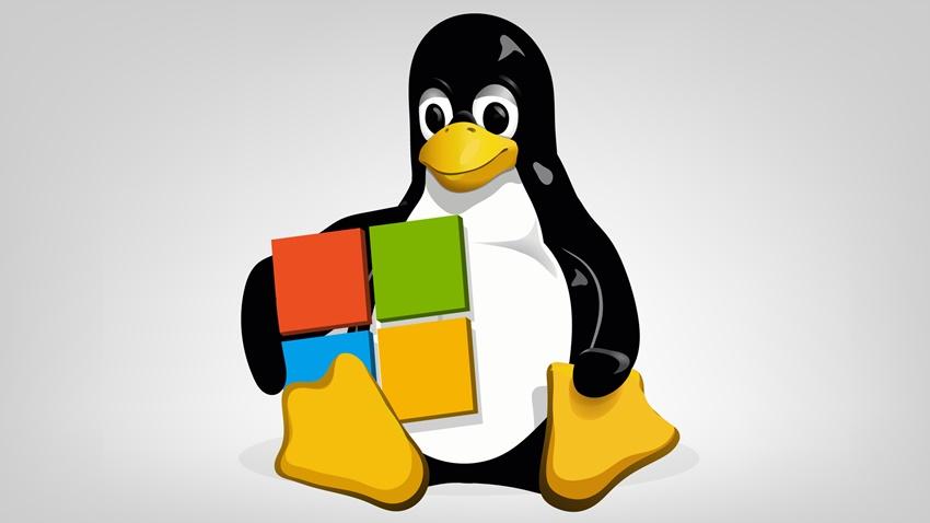 Microsoft linux patent