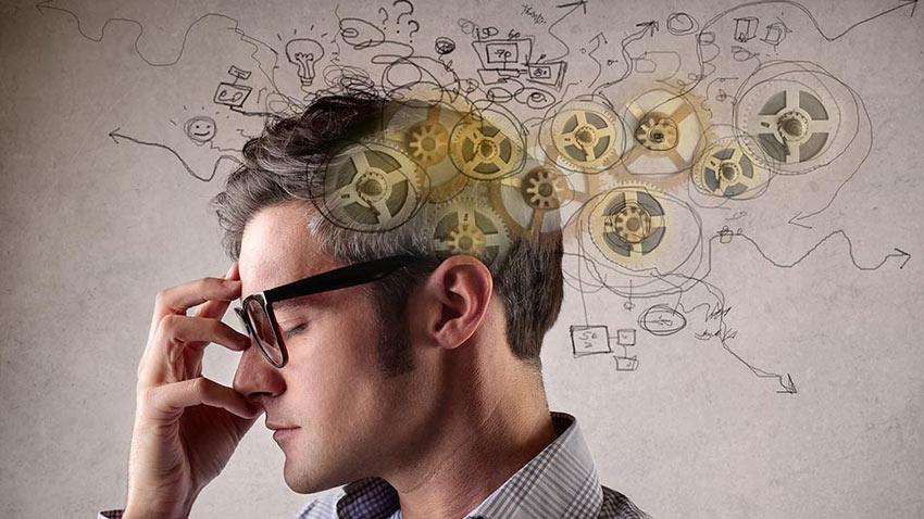 Beyin Gelişimi IQ Artışı 1