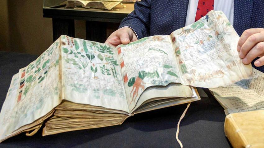 Voynich el yazması Türkçe