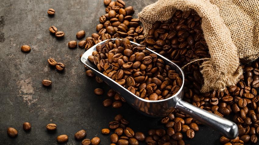 Dünyanın En Popüler Kahve Türlerinin Soyu Tükeniyor!