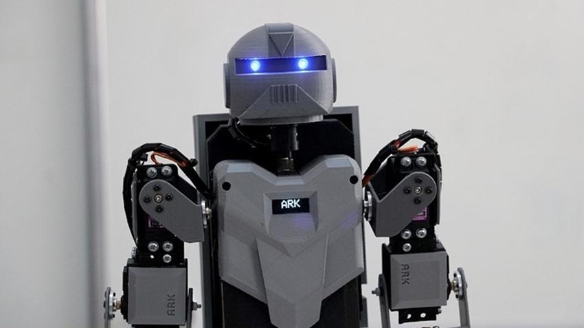 denizli robot insansı