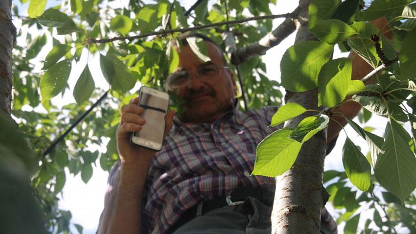 Çankırı Bademçay Köyü Telefon Konuşması 1