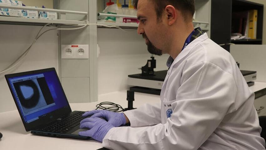 türk bilim insanları h1n1