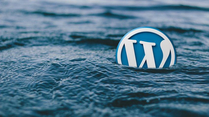 ücretsiz wordpress eklentisi dikkat edilmesi gerekenler