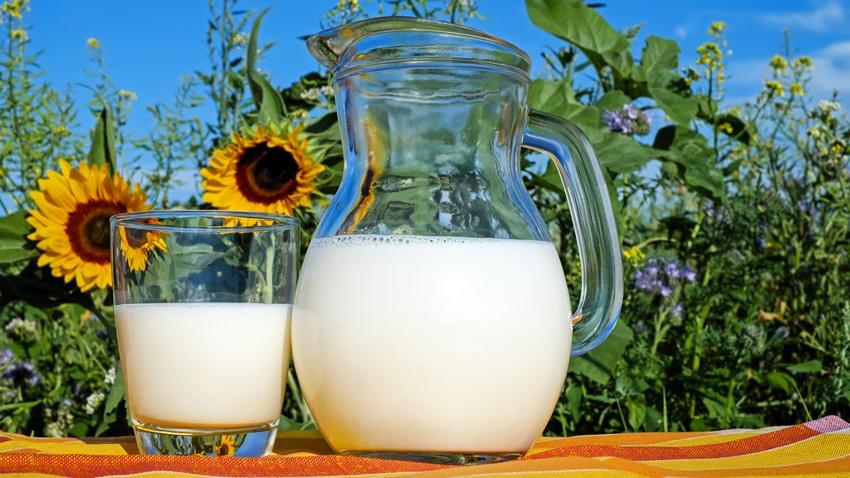 Süt İçmek Meme Kanseri Riskini Artırabilir! İşte Araştırma