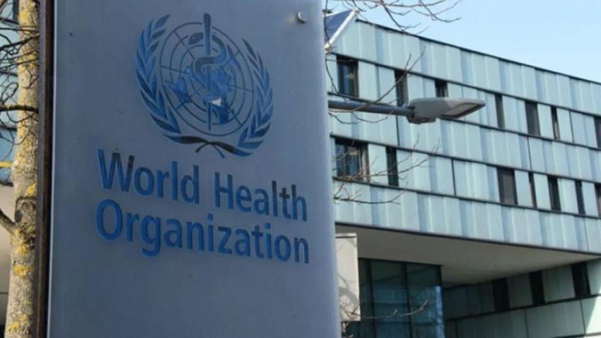 Dünya Sağlık Örgütü 1