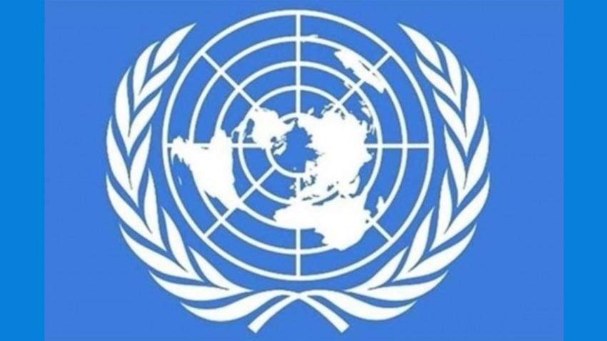 BM Açıkladı: Afrika'da Gerekli Önlemler Alınmazsa Ölü Sayısı 3.3 Milyona Ulaşabilir