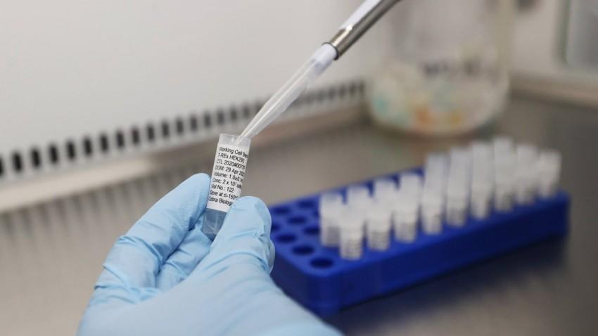 Tütün Bazlı Covid-19 Aşısı İlk Testlerden Başarı ile Geçti