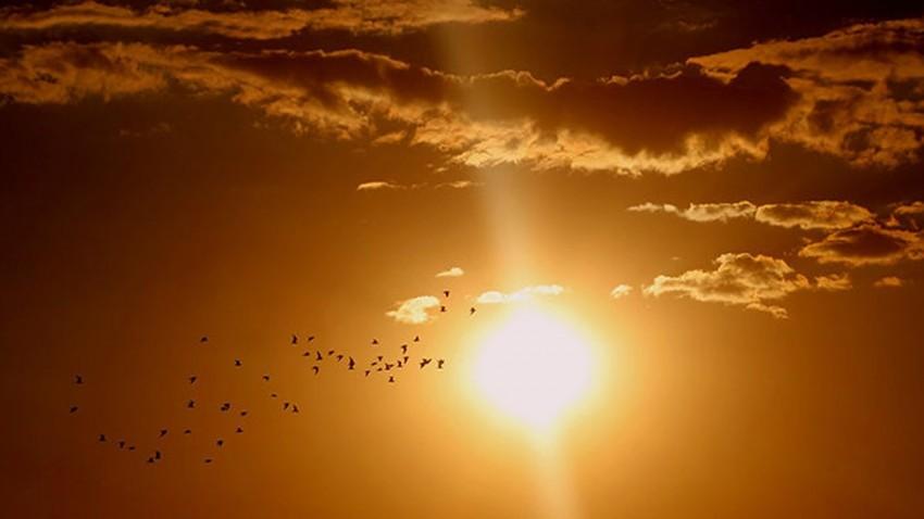 Dünya'nın En Sıcak Yılı Bu Yıl Olacak -2